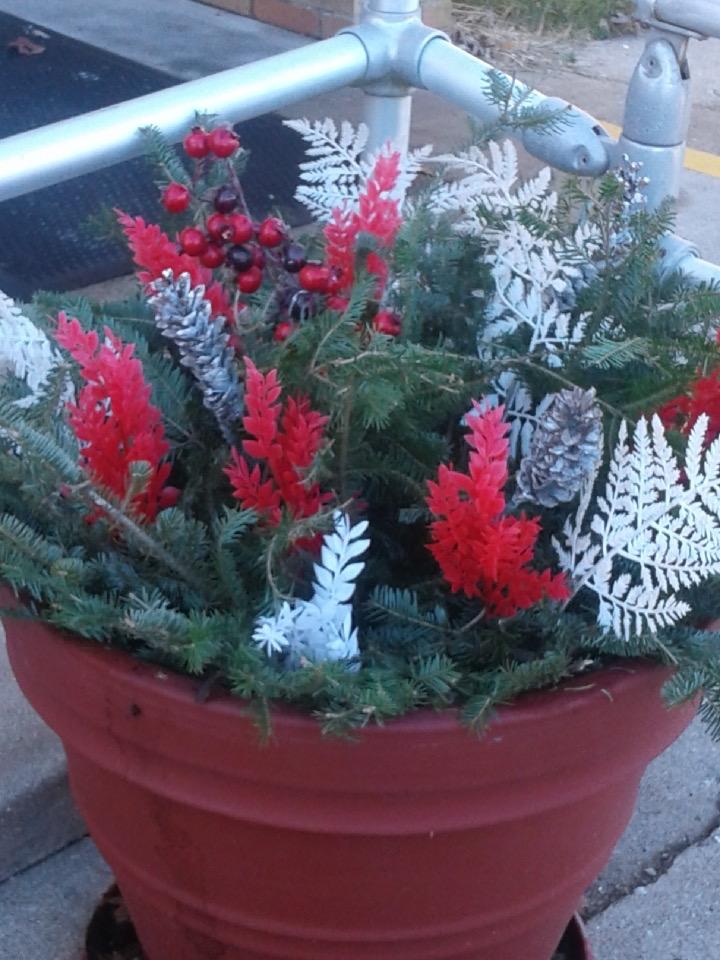 Keep Bismarck Beautiful 2019 Winter Flowers